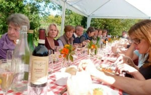 Feast at Oatley Vineyard